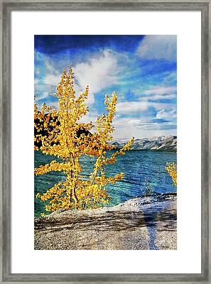 Early Fall Framed Print by Marty Koch