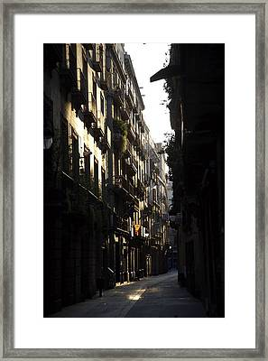 Early Light Framed Print by Lee Stickels