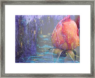 Early Morning Framed Print by  Cid