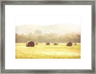 Early Morning Dew  Framed Print by Tamyra Ayles