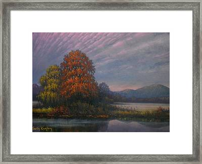 Early Morning Mist Framed Print by Sean Conlon