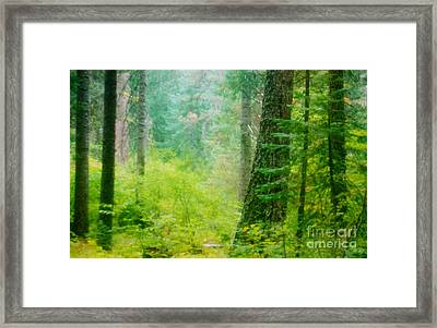 Early Spring 2 Framed Print by Shasta Eone