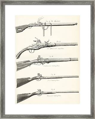 Early Types Of Firearms. 1. The Framed Print by Vintage Design Pics