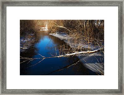 Early Winter Framed Print by Karol Livote