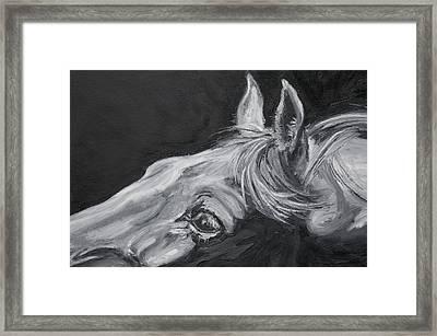 Earnest Eyes - Detail Framed Print by Renee Forth-Fukumoto