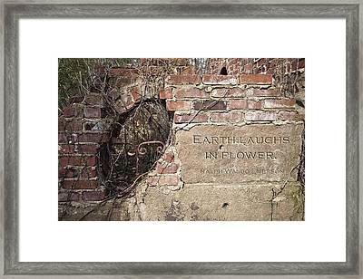 Earth Laughs In Flower Wall Framed Print by Tom Mc Nemar
