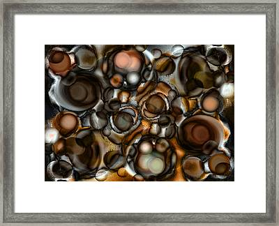 Earth Tone Framed Print by Frank Tschakert