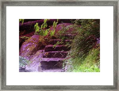 Easy Steps  Framed Print by Jeff Swan