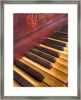 Ebony And Ivory Framed Print by Jame Hayes