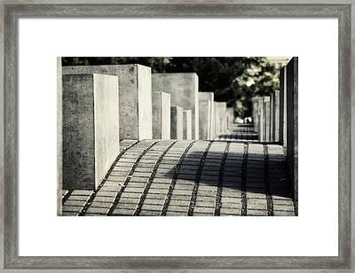 Echo Framed Print by Joan Carroll