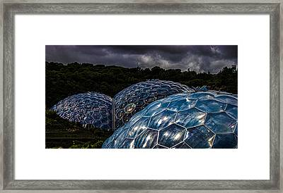 Eden Project Cornwall Framed Print by Martin Newman