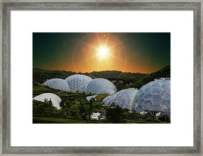 Eden Project Framed Print by Martin Newman