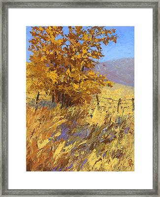 Edge Of Autumn Framed Print by David King