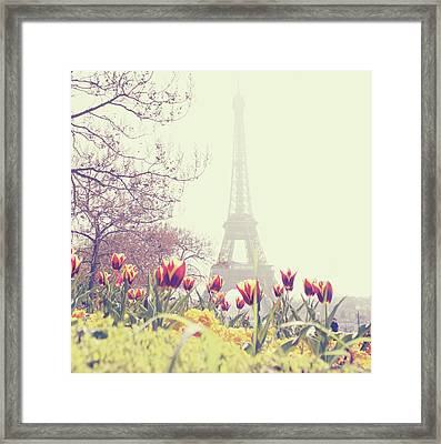 Eiffel Tower With Tulips Framed Print by Gabriela D Costa