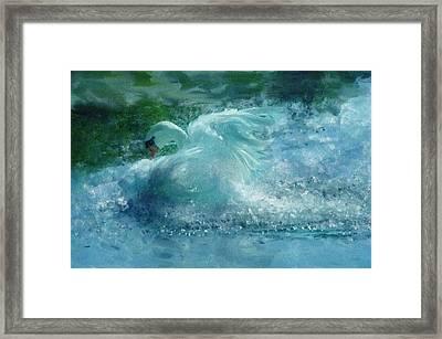 Ein Schwan - The Swan Framed Print by Georgiana Romanovna