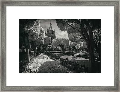 el Jardin Framed Print by Sean Foster