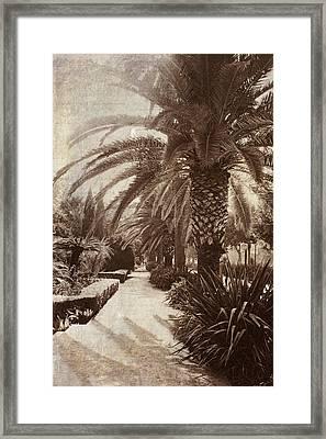 El Parque Vintage. Malaga. Spain Framed Print by Jenny Rainbow
