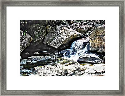 El Yunque Stream Framed Print by Carey Chen