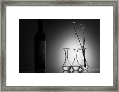 Elegance. Light And Shadow Framed Print by Dmitry Soloviev