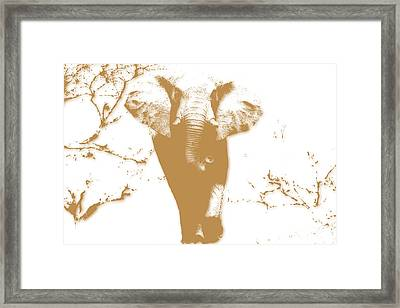 Elephant 2 Framed Print by Joe Hamilton