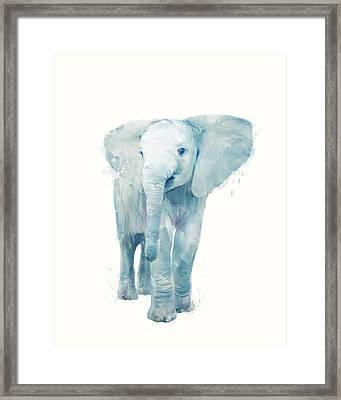 Elephant Framed Print by Amy Hamilton