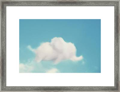 Elephant In The Sky Framed Print by Amy Tyler
