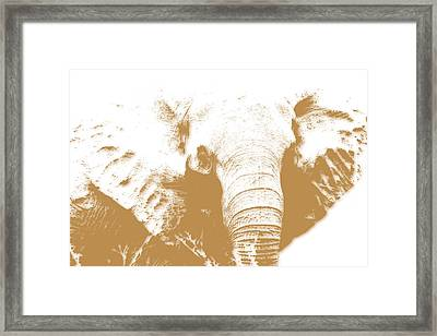 Elephant Framed Print by Joe Hamilton