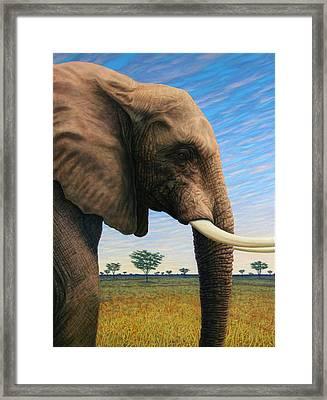 Elephant On Safari Framed Print by James W Johnson