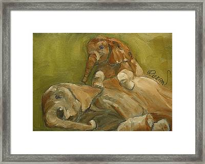 Elephants Framed Print by Rezan Ozger