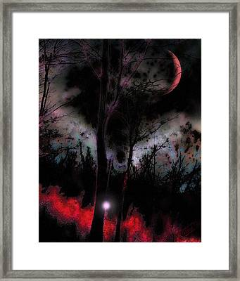 Elfenfeuer Framed Print by Mimulux patricia no