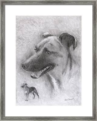 Eliot Framed Print by Jack Skinner