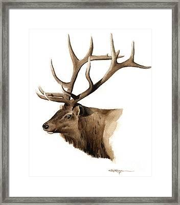 Elk Framed Print by David Rogers