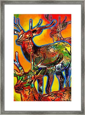 Elk Expressions Framed Print by Jo-Anne Gazo-McKim