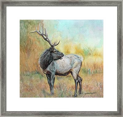 Elk In Winter Painting Framed Print by Janet Pancho Gupta