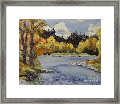 Elk River Fall Steamboat Springs Colorado Framed Print by Zanobia Shalks