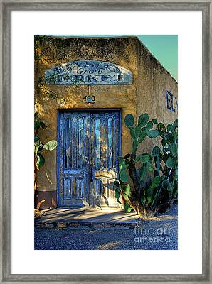 Elysian Grove In The Morning Framed Print by Lois Bryan