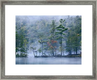 Emerald Lake In Fog Emerald Lake State Framed Print by Tim Fitzharris