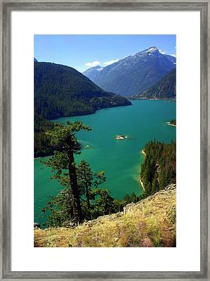 Emerald Lake Framed Print by Marty Koch