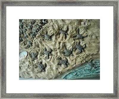 Emergence Framed Print by Doris Lindsey