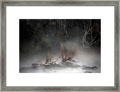 Emergence Framed Print by Skip Willits