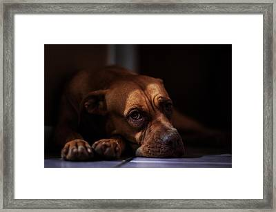 Emotion Framed Print by Raymond Collins