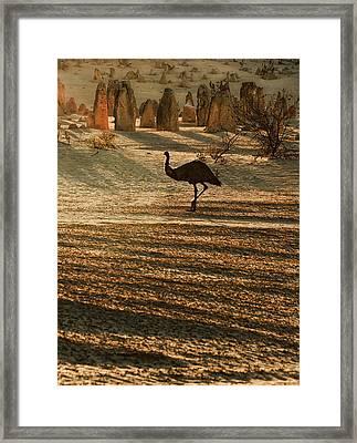 Emu Terrain Framed Print by Heather Thorning
