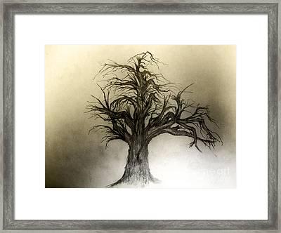 Enchanted Framed Print by John Krakora