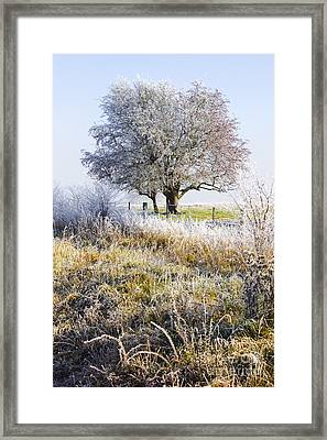 Enchanting Snow Covered Landscape Framed Print by Jorgo Photography - Wall Art Gallery