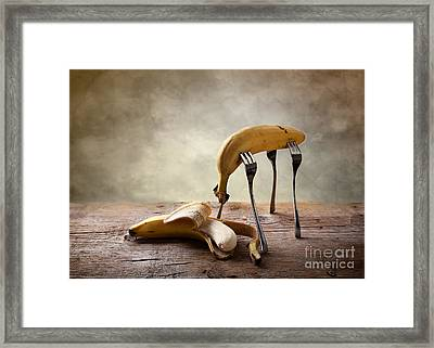 Encounter Framed Print by Nailia Schwarz