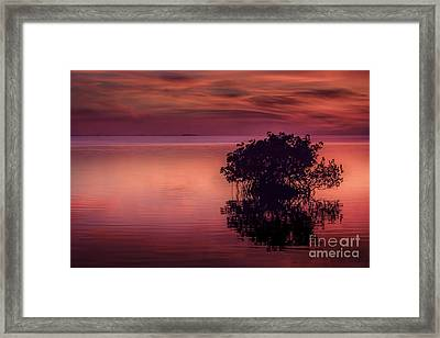 End Of Another Day Framed Print by Marvin Spates