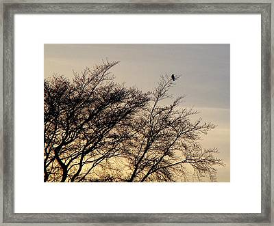 End Of Day Framed Print by Roberto Alamino