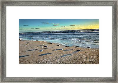 End Of The Day Framed Print by Felix Lai