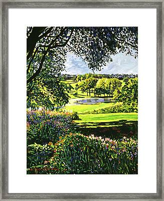 English Country Pond Framed Print by David Lloyd Glover
