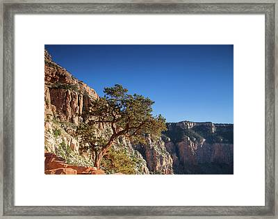 Enjoying The Canyon Framed Print by Kunal Mehra